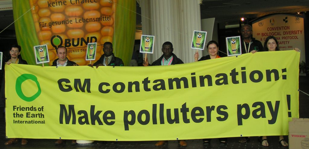 NEW REPORT: GM crops increase pesticide use and fail to alleviate poverty