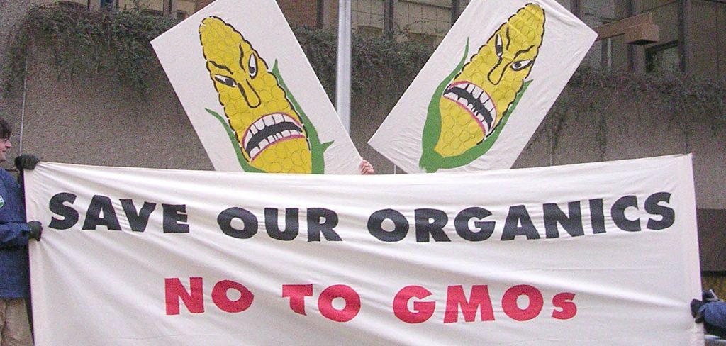 Ministers open door for GMOs in organic food