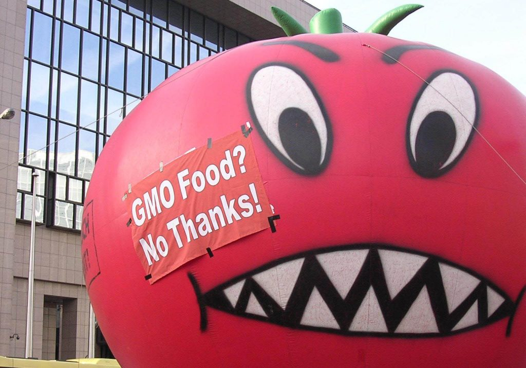 NEW REPORT: Biotech industry fakes growth of GM crops in Europe