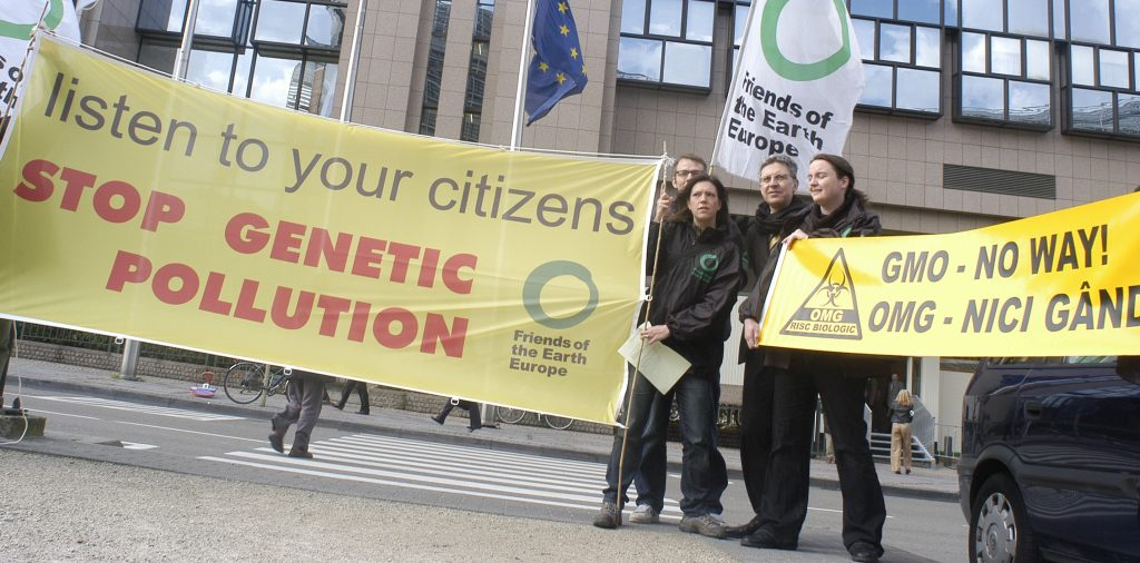 EFSA sidelines GM maize food safety fears