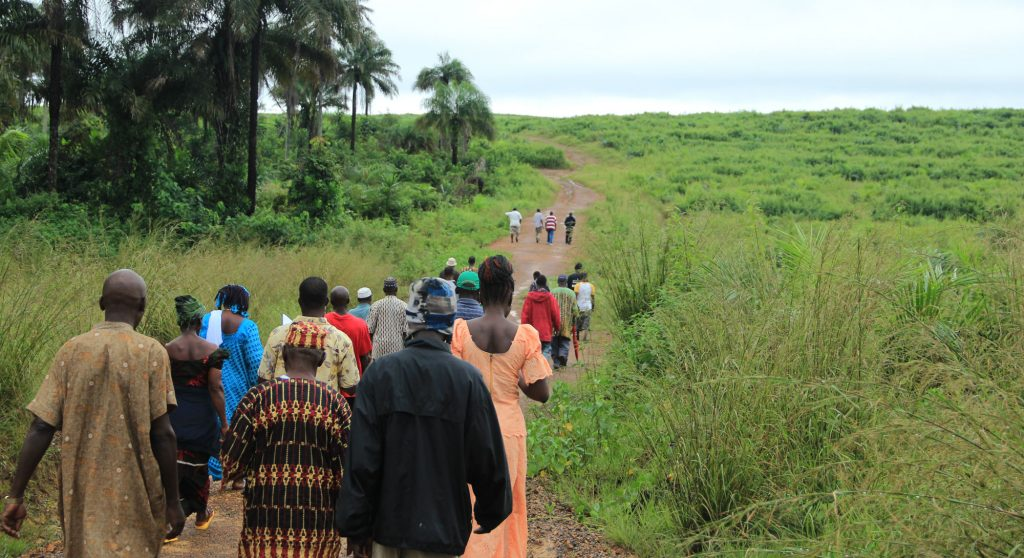 European investments assist land-grabs in Liberia