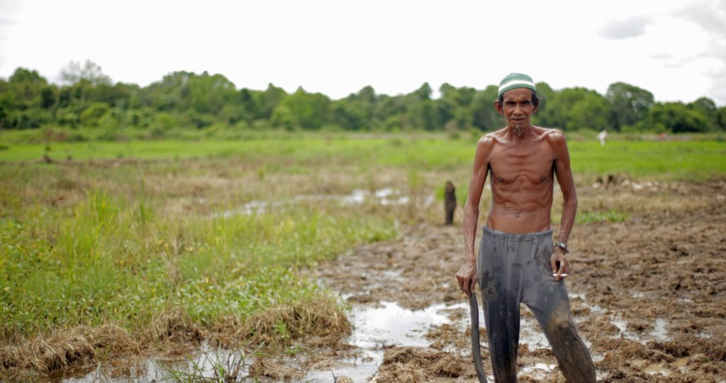 Against the tide: tackling palm oil in Indonesia