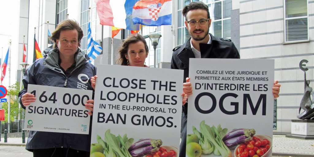 MEPs urged to vote for genuine rights to ban GM crops