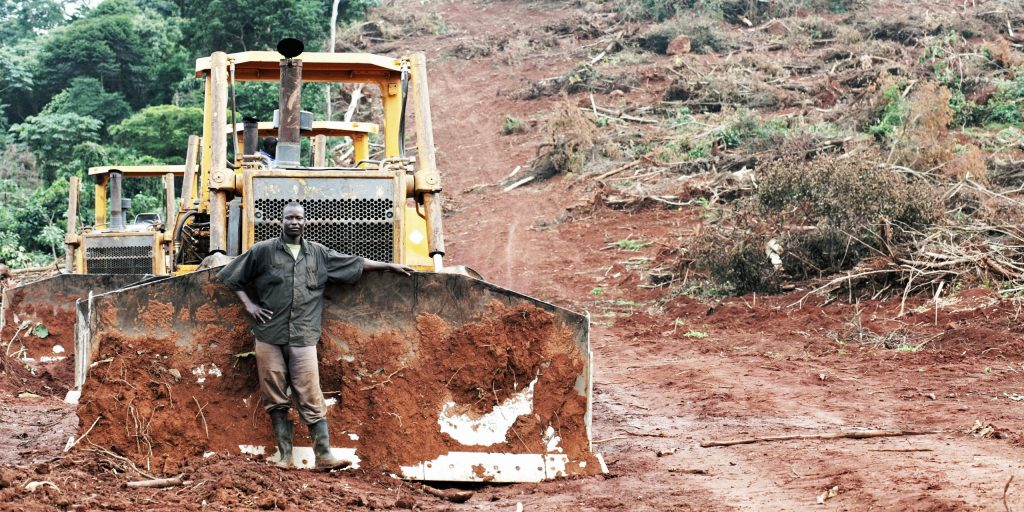 Ugandan oil palm project taken to court over land-grab claims