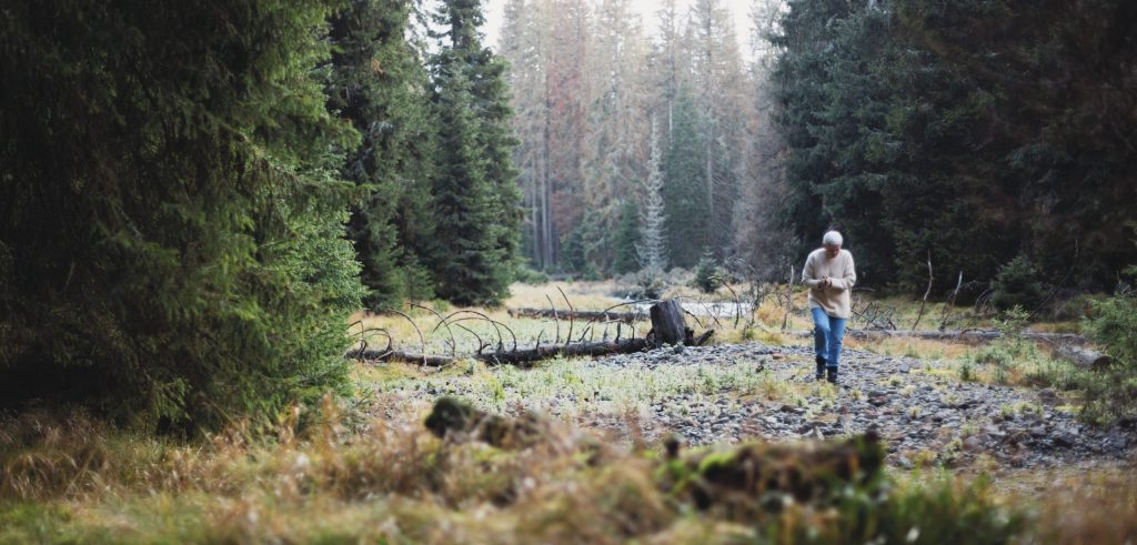 Europe's nature in trouble as protection targets veer off track