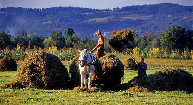 International Peasants' Day: join the food sovereignty revolution