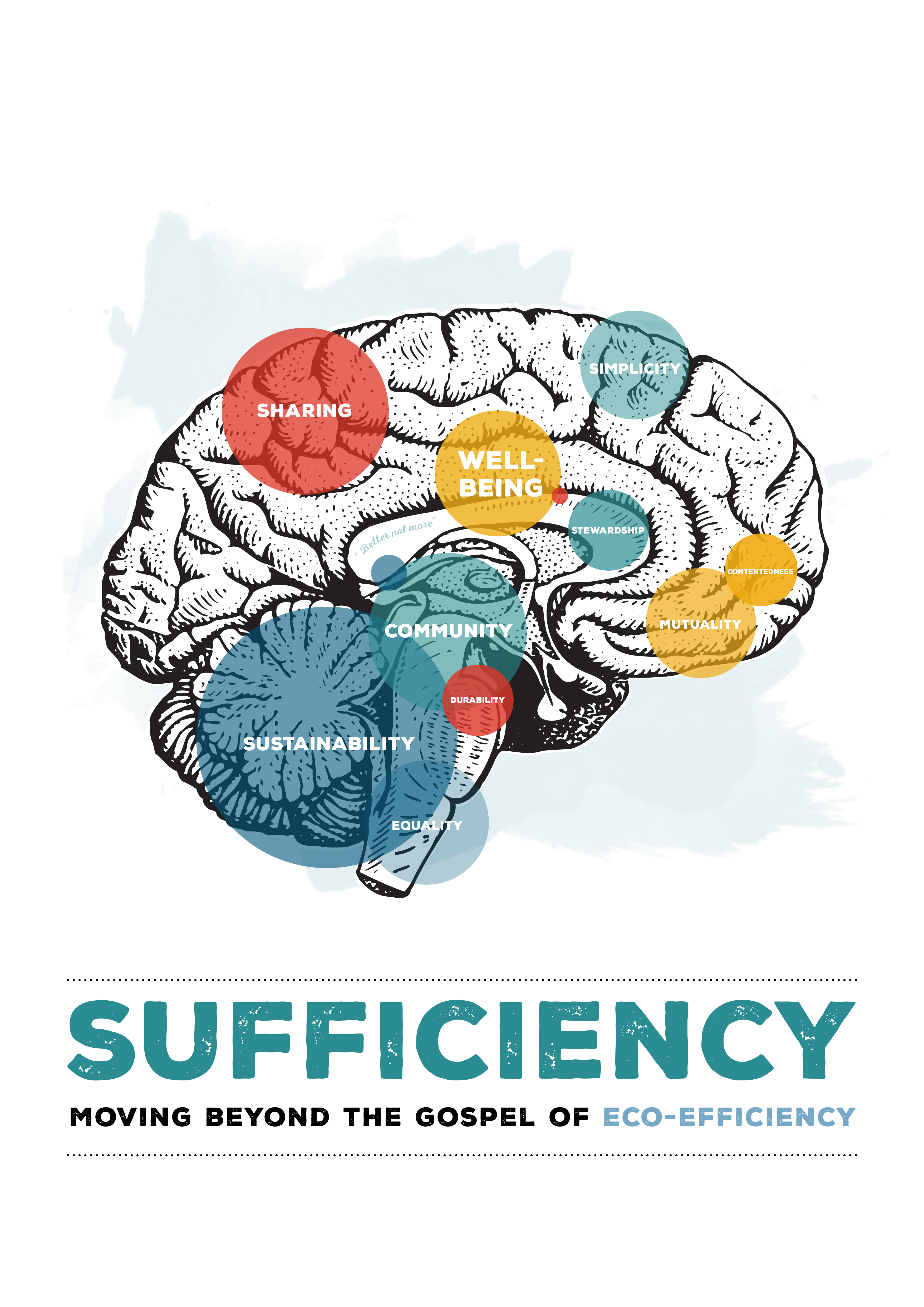 Sufficiency: moving beyond the gospel of eco-efficiency