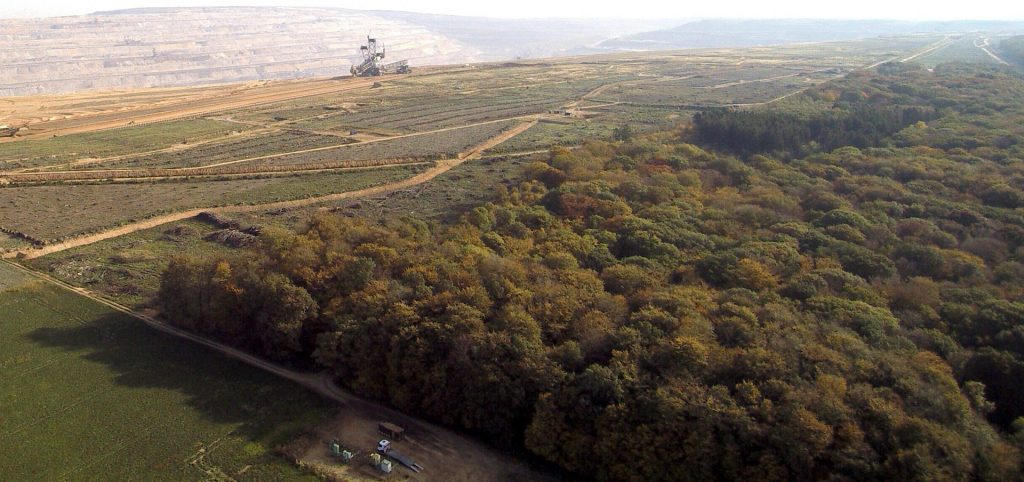 Save the Hambach Forest – stop coal mining!