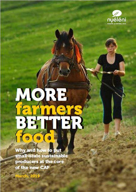 Nyeleni ECA - More Farmers Better Food - 25