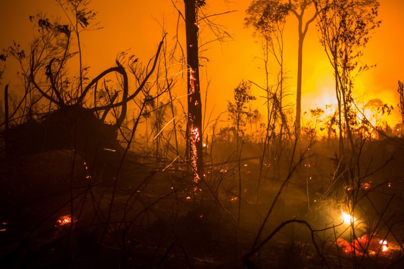Fires in the Amazon (C) Victor Moriyama